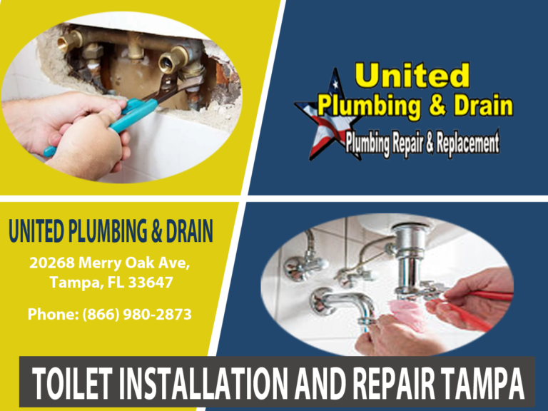 Toilet Installation and Repair Tampa