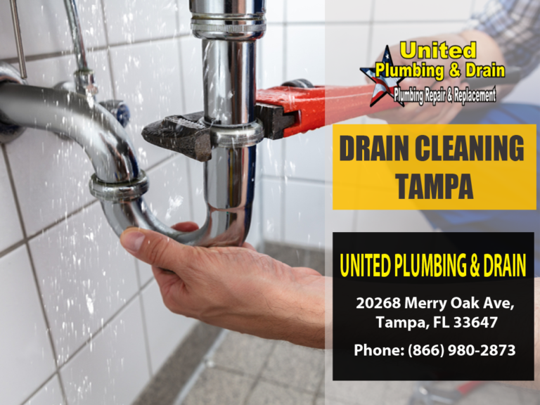 Drain Cleaning Tampa