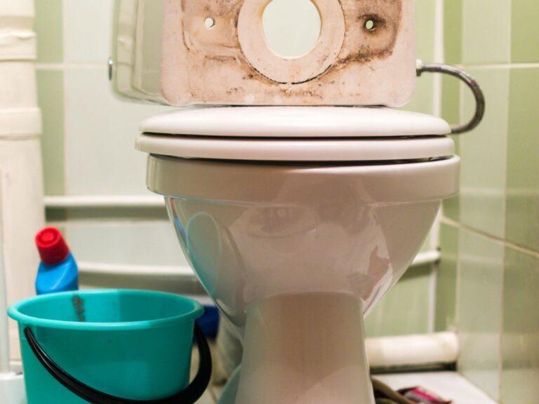 toilet repair in port richey, FL